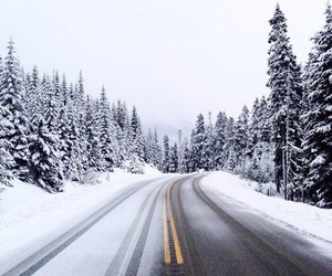christmas, explore, and road image