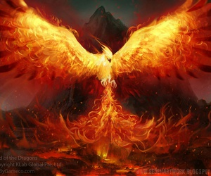 phoenix, fire, and fantasy image