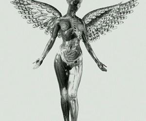 nirvana and in utero image