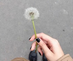 flowers, grunge, and nails image