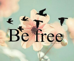 free, flowers, and bird image