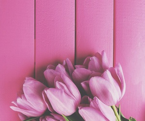 flower, iphone wallpaper, and tulips image