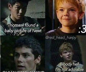 newt, thomas, and Minho image