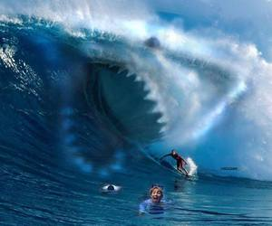 shark, waves, and ocean image