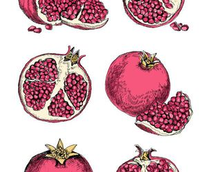 fruit, drawing, and red image