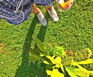 converse, girl, and photo image