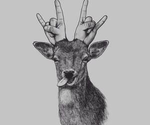 deer, animal, and drawing image