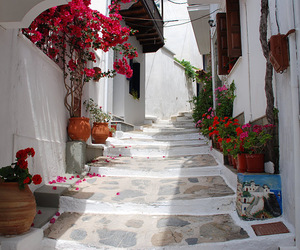 Greece, flowers, and lovley image