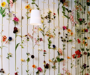 creative, decor, and flowers image
