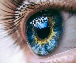blue, eye, and yellow image