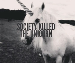 unicorn, society, and black and white image
