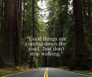 nature, quote, and forest image
