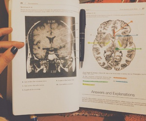 book, brain, and doctor image