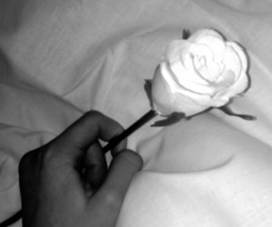 black and white, noemi overmars, and flower image