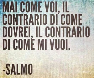 phrases and salmo image