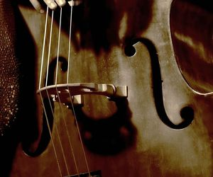 cello and music image