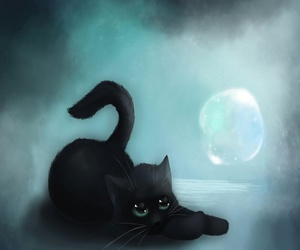 black, cat, and lua image