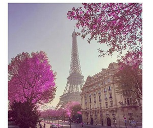 paris, amazing, and france image