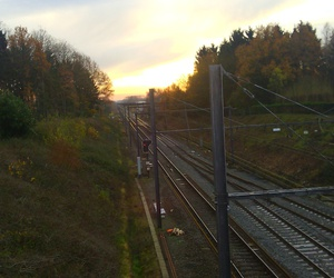 beautiful sky, fall, and train image