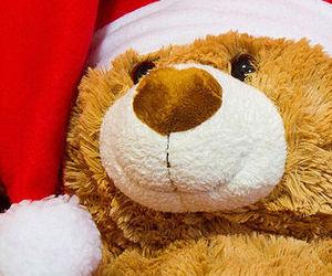 bear, christmas, and fluffy image