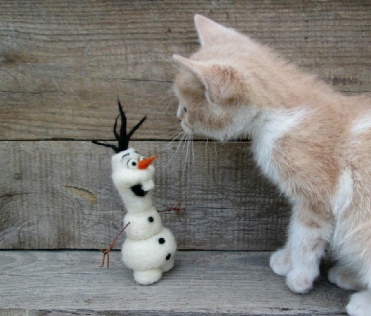 meeting, kitten, and olaf image
