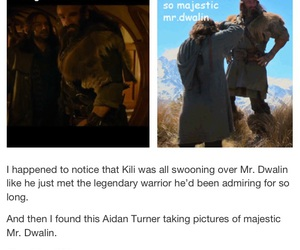 admire, dwarves, and hobbit image