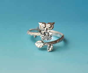 bling bling, owl, and party image