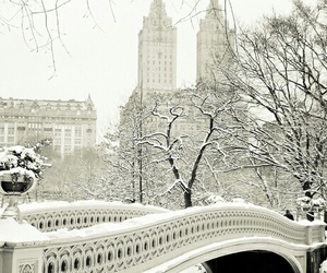 snow and winter image