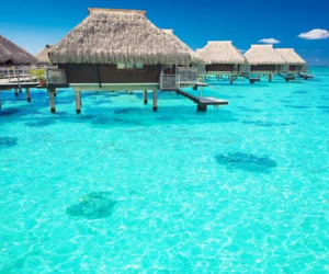 water, Maldives, and summer image