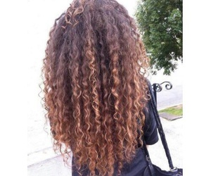 beauty and curly image