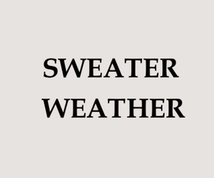 sweater, weather, and quotes image