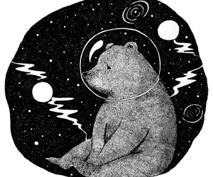 bear, space, and black and white image