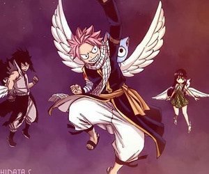 fairy tail, natsu, and happy image
