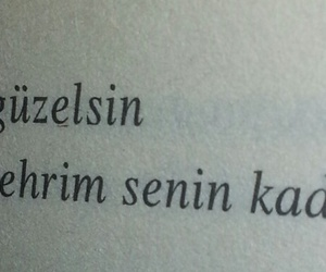 siir and türkçe image