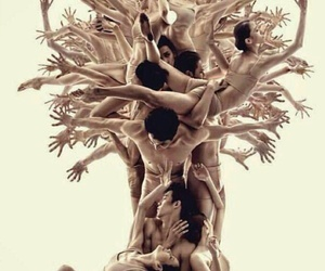 tree, dance, and art image