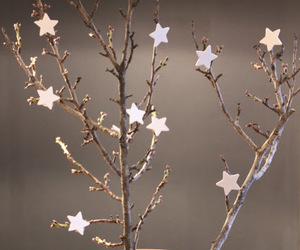 christmas and stars image