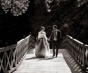 bride, bridge, and dress image