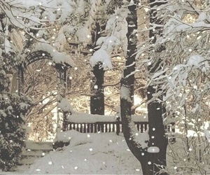 winter, snow, and christmas image