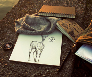 drawing, deer, and photography image