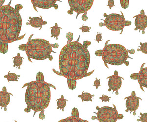 patterns, turtles, and wallpapers image