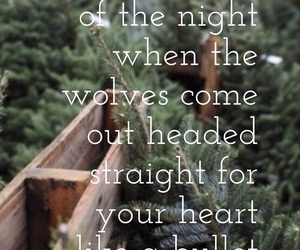 Lyrics, quotes, and wolves image