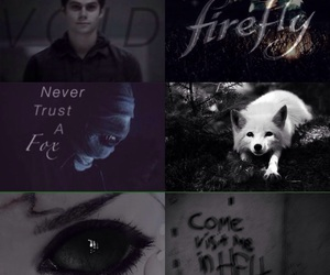 aesthetic, demon, and firefly image