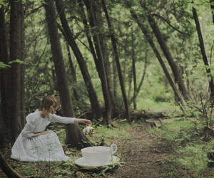 alice, forest, and nature image