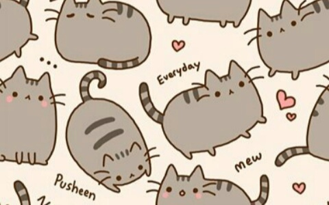 Gros Chat Kawaii Shared By Maya On We Heart It