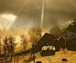 country, sheep, and sunshine image