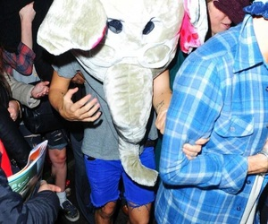 Harry Styles, one direction, and elephant image