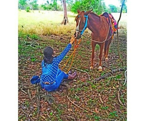 horse, ranch, and Cowgirl image