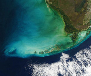 color, florida, and satellite image