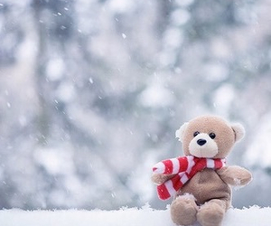 snow, winter, and bear image
