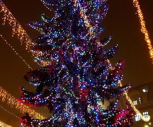 2016, decoration, and lights image